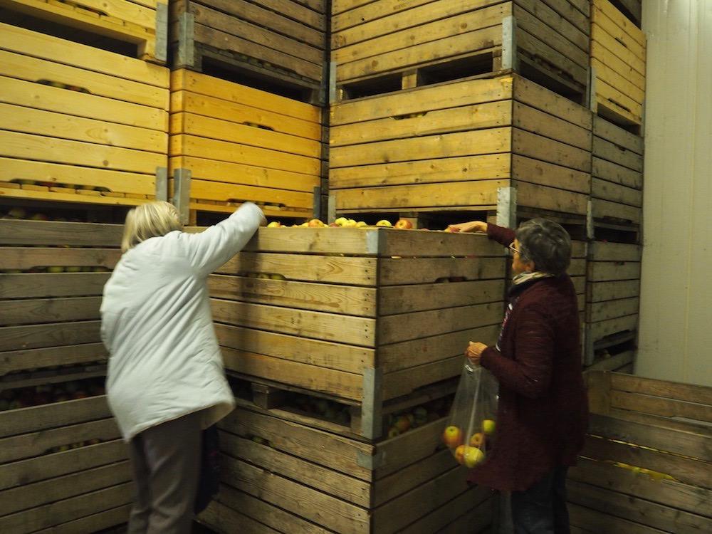 Äpfel einpacken – die beiden alten Damen sind noch ganz schön beweglich